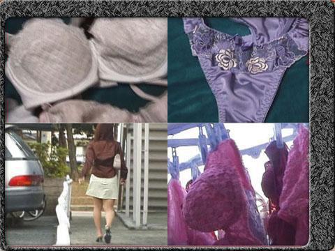 下着泥棒の下着コレクション 盗んで集めた下着マニアの為の動画